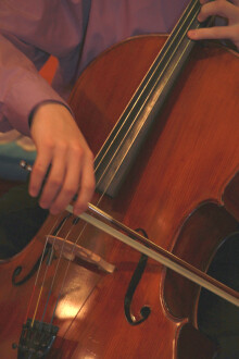cellist - cellist performing for...